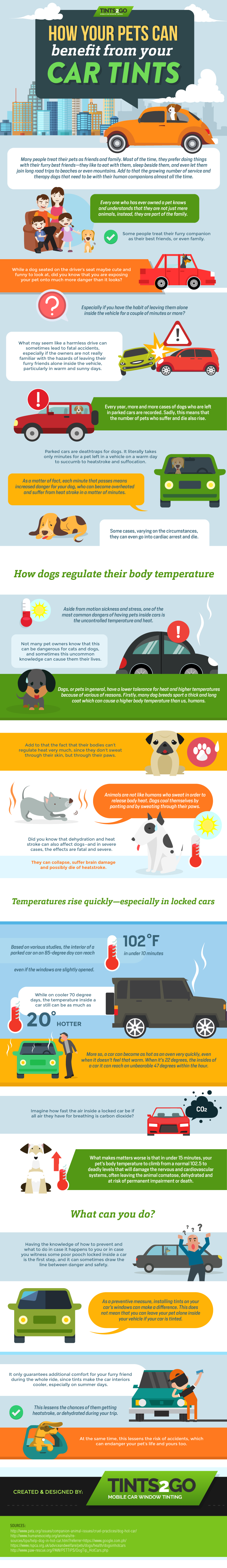 How your pets can benefit from your car tints