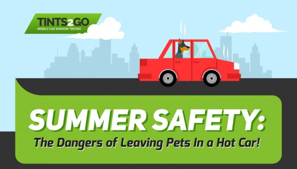 Summer Safety The Dangers of Leaving Pets in a Hot Car-01