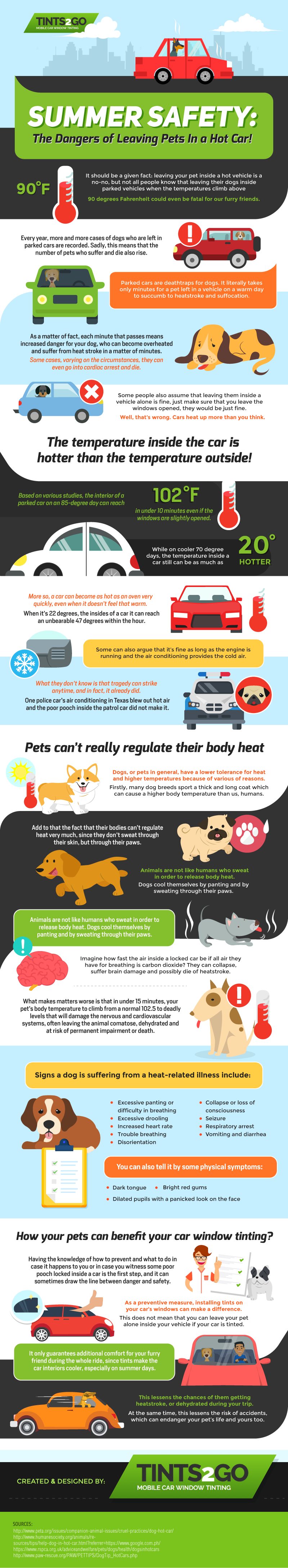 Summer Safety The Dangers of Leaving Pets in a Hot Car